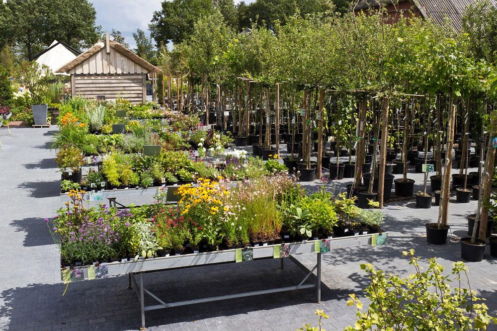 Vreugdenhil Mooimakers voor uw tuin